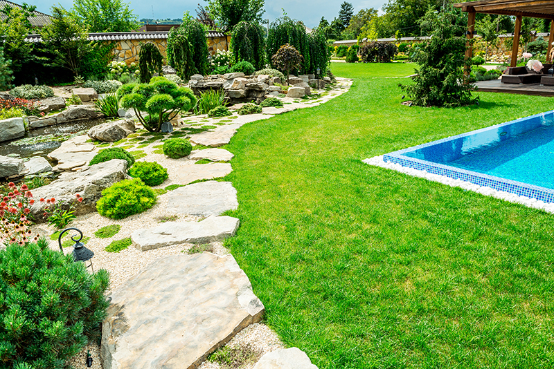 3 Super Easy Swimming Pool Landscaping Tips