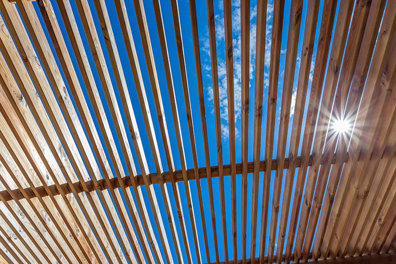 Pergolas Vs. Arbors: Is There a Difference?