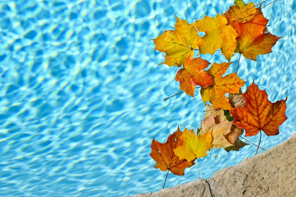 The Fall is a Great Time to Enjoy Your Swimming Pool